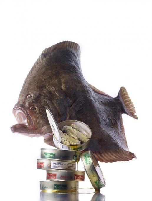 steinbutt_sardinenfilets