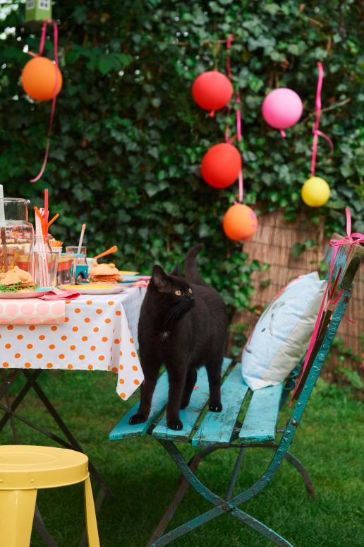 Kinder Tafel Katze